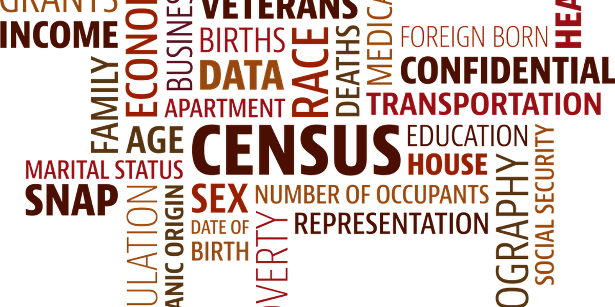 SIU visiting professor: 2020 census important for state seats, money