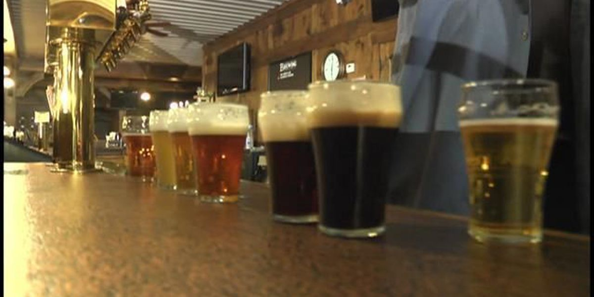 Brewfest highlights local Missouri beers and businesses