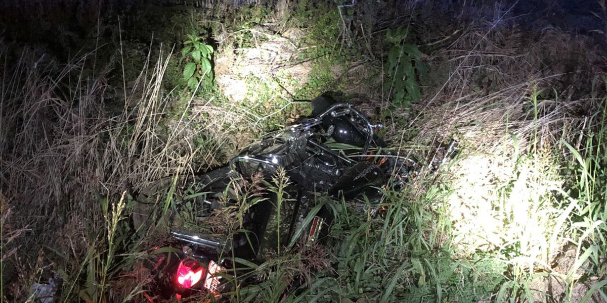 Motorcyclist crashes in attempt to avoid deer, charged with DUI