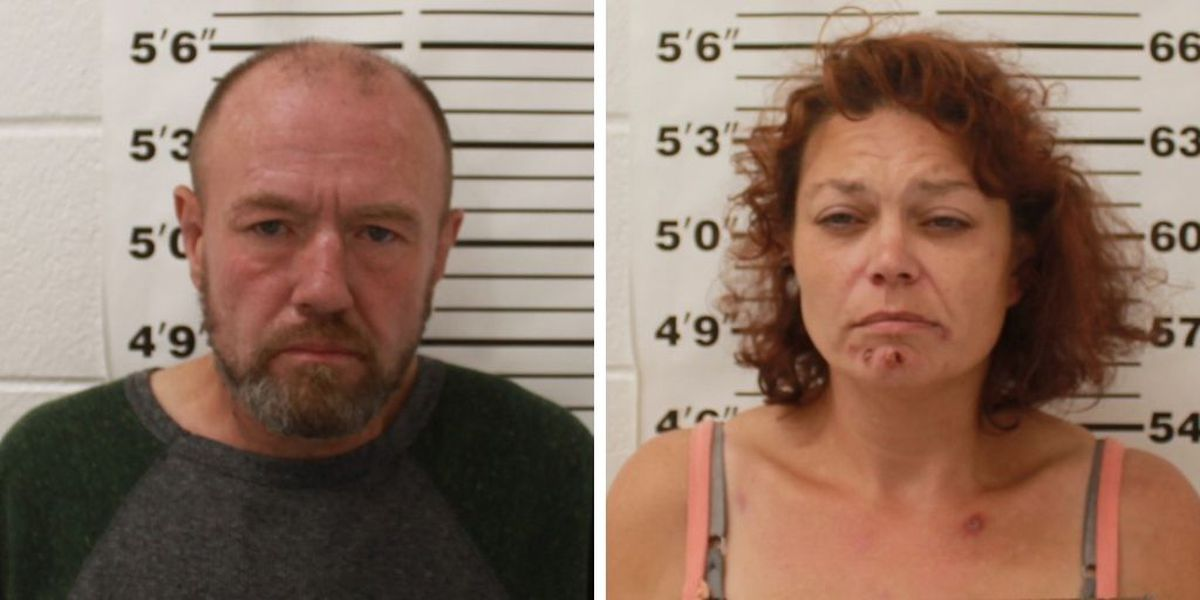 Two arrested in Vienna, Ill. in connection to multi-county crime spree